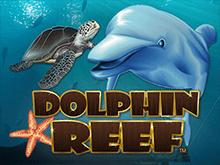 Автомат на деньги в Вулкан Платинум Dolphin Reef